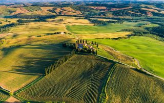 Morning-sunlight-drone-view-of-a-Tuscan-winery
