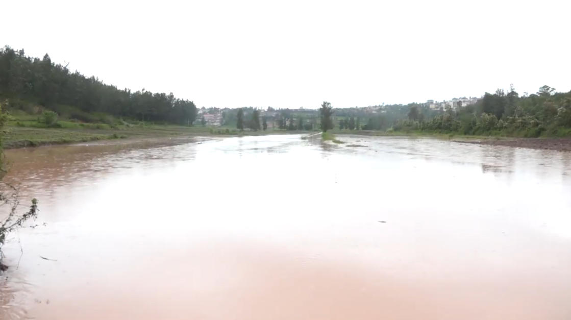 Hectares of crops in valleys were highly damaged by flood